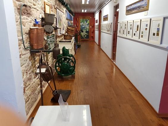 Citrus museum 2